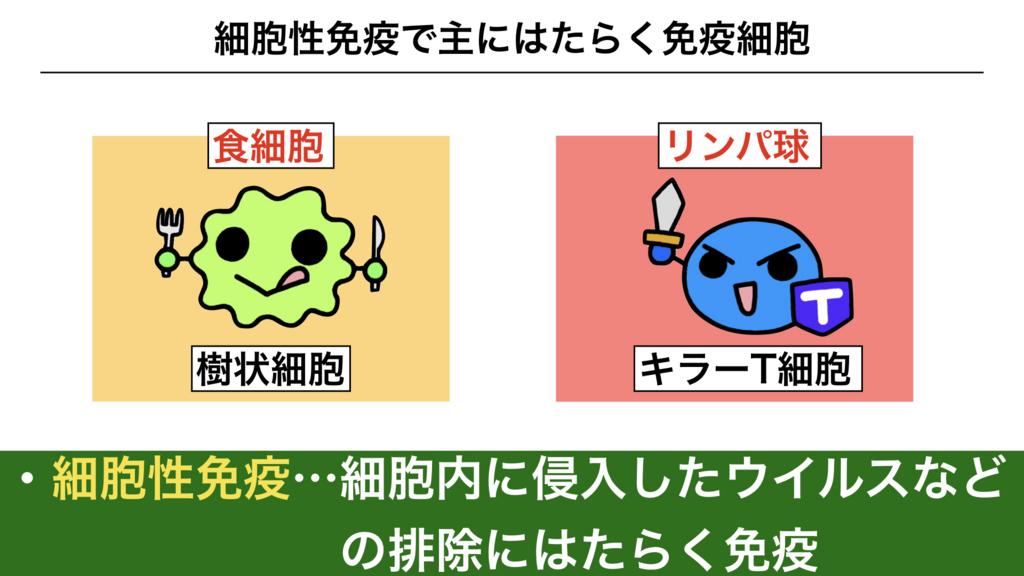 f:id:shimasensei:20180312075248j:plain