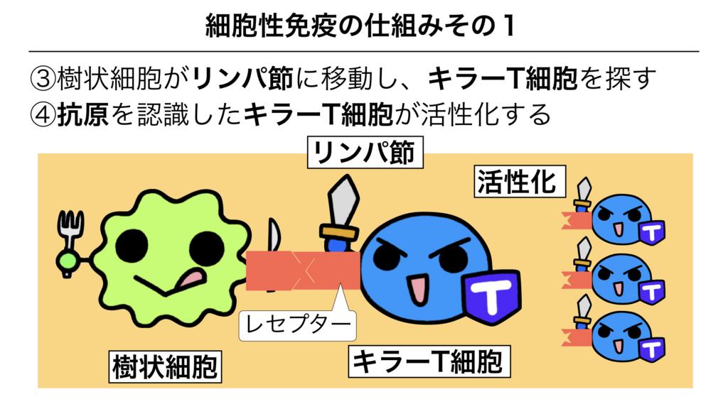 f:id:shimasensei:20180312075427j:plain
