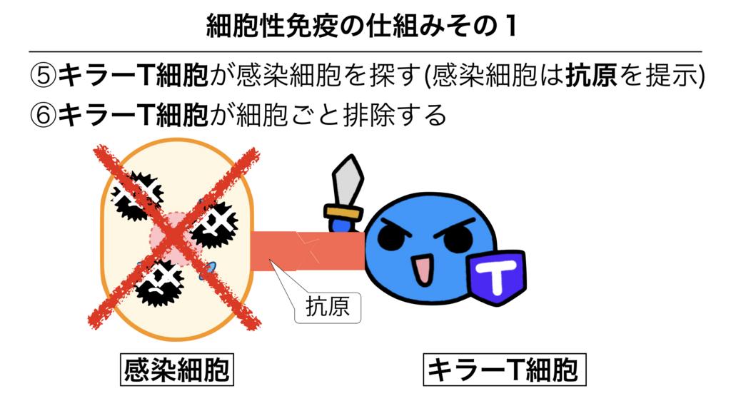 f:id:shimasensei:20180312075453j:plain