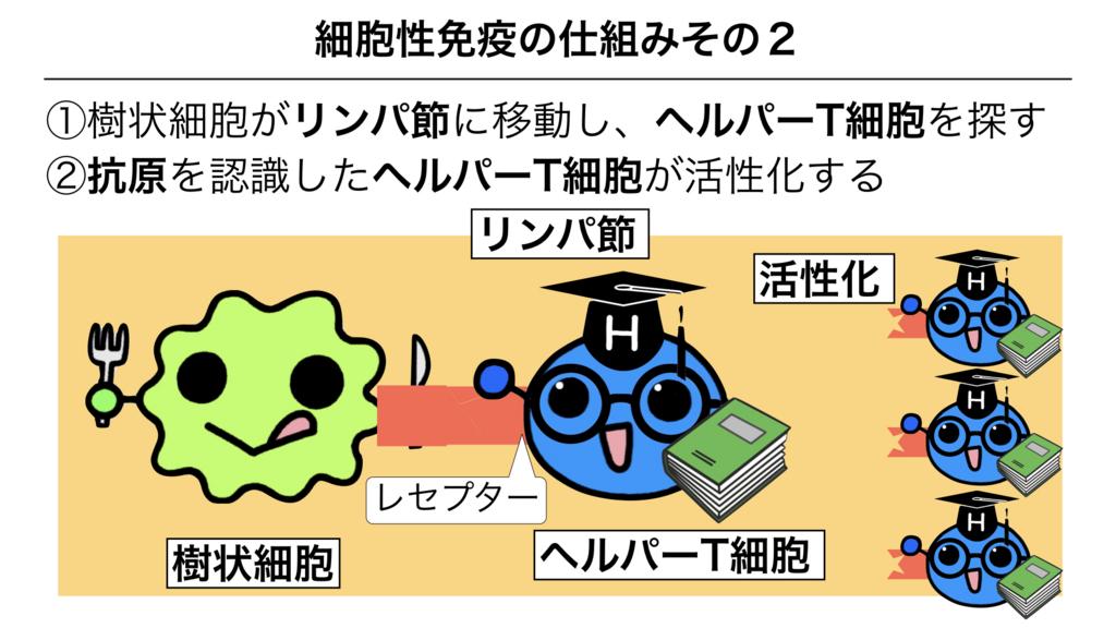 f:id:shimasensei:20180312075539j:plain