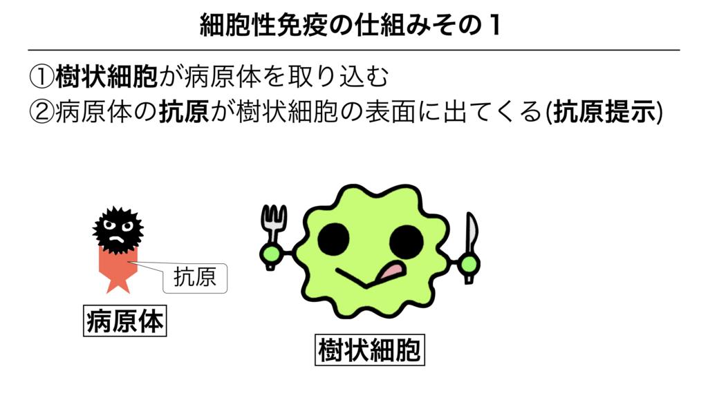f:id:shimasensei:20180312080054j:plain
