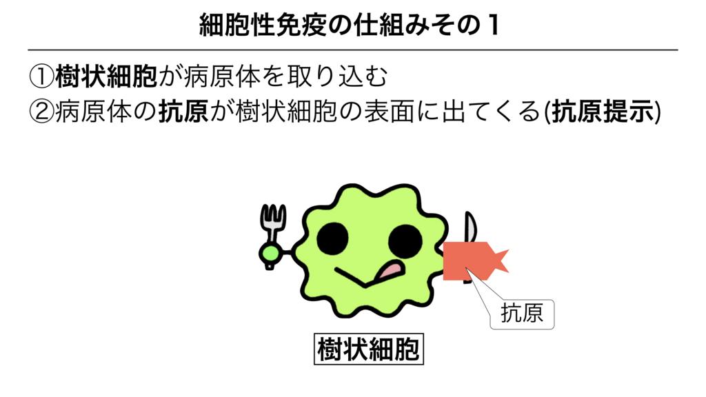 f:id:shimasensei:20180312080125j:plain