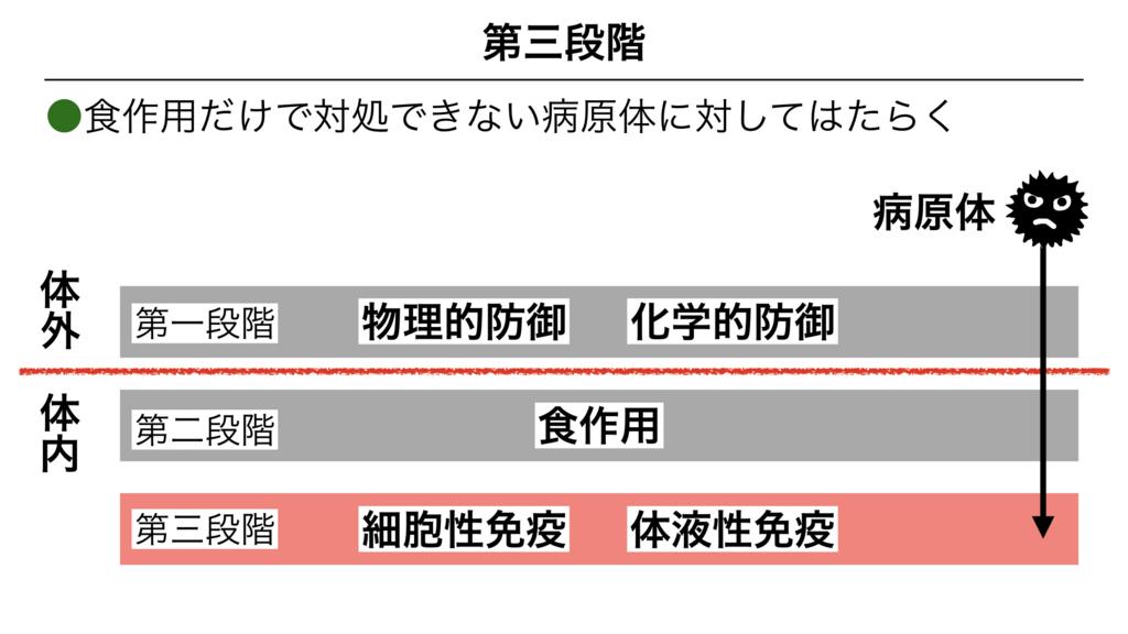 f:id:shimasensei:20180313171619j:plain