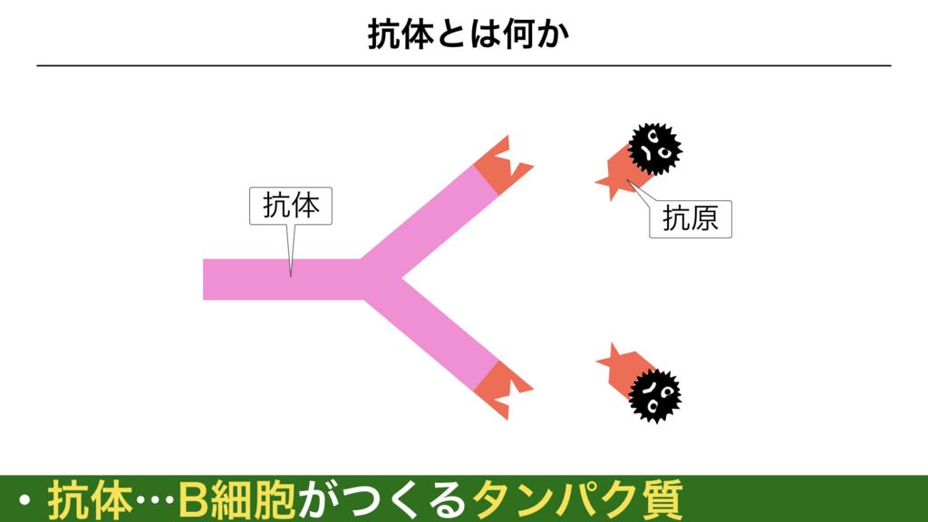 f:id:shimasensei:20180313173244j:plain