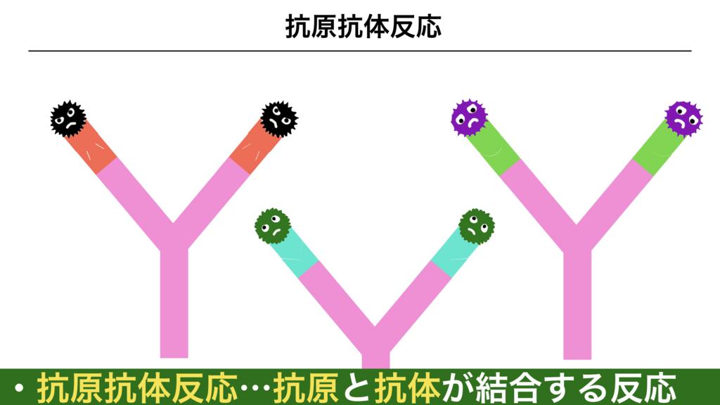 f:id:shimasensei:20180313173340j:plain
