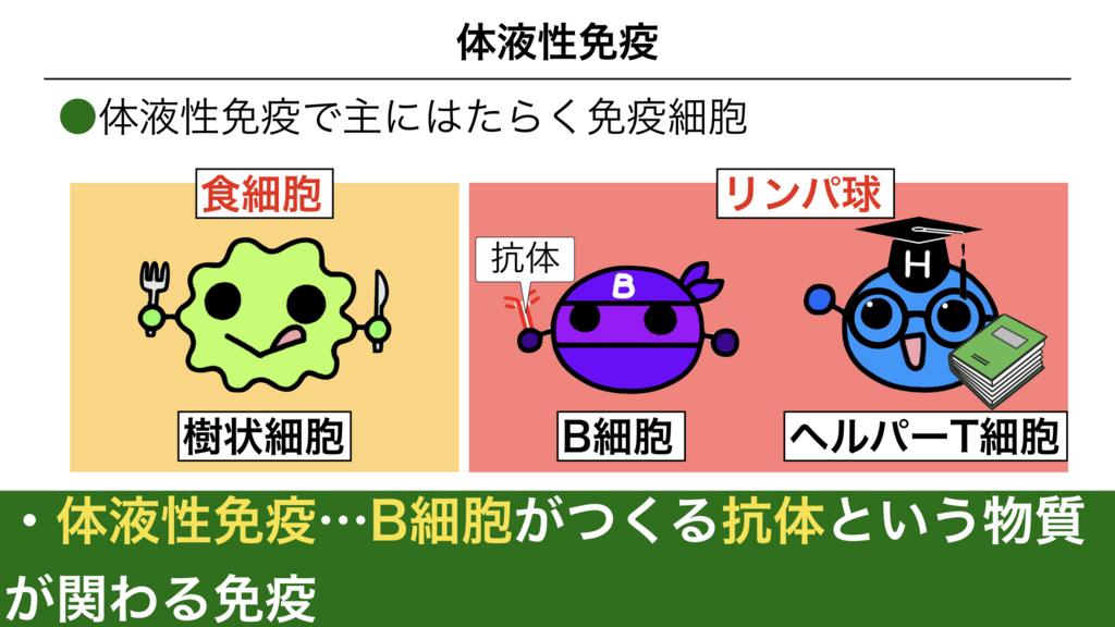f:id:shimasensei:20180313173536j:plain