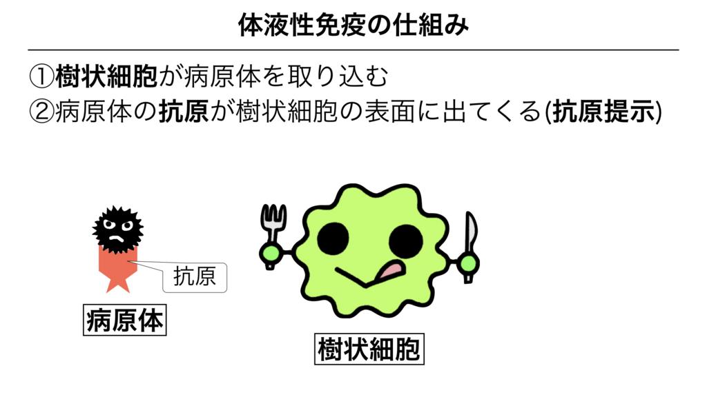 f:id:shimasensei:20180313173737j:plain