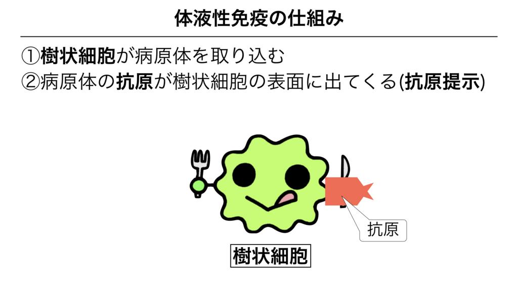 f:id:shimasensei:20180313173804j:plain