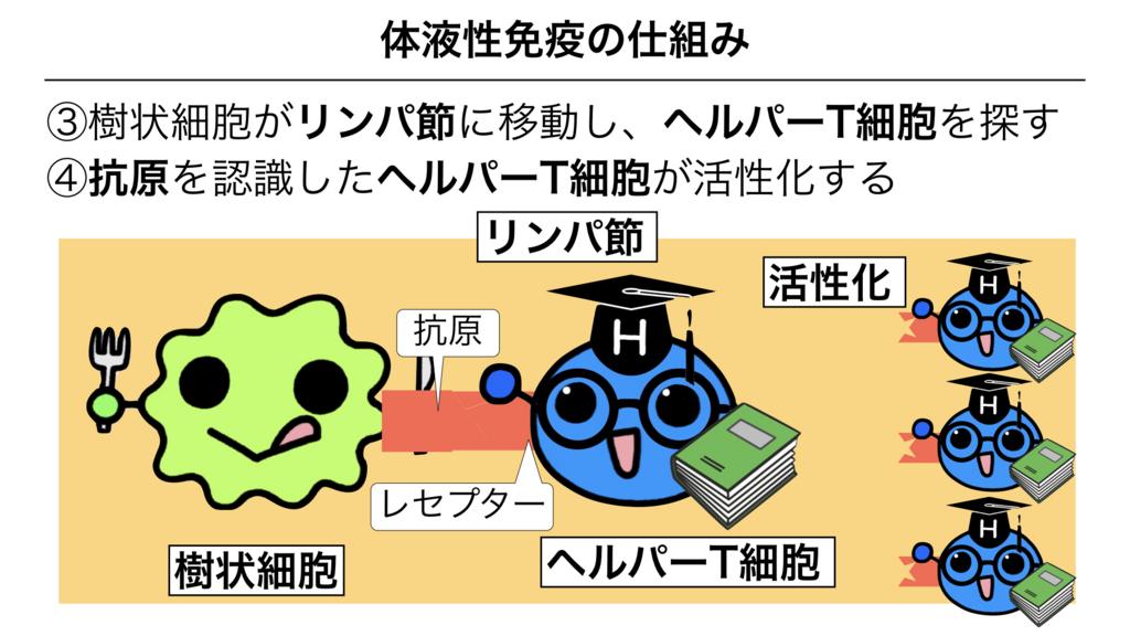 f:id:shimasensei:20180313173852j:plain