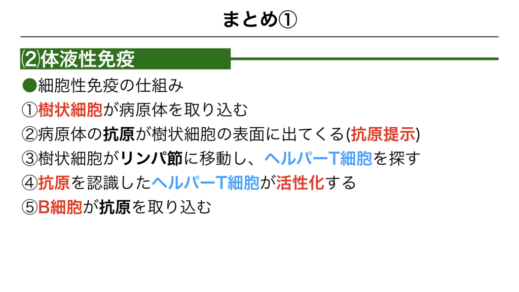 f:id:shimasensei:20180313174230j:plain