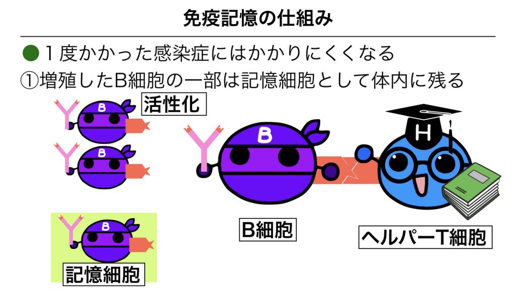 f:id:shimasensei:20180313174318j:plain