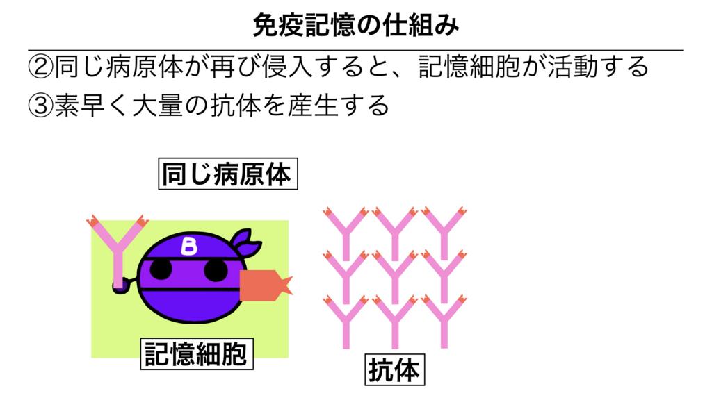 f:id:shimasensei:20180313174351j:plain