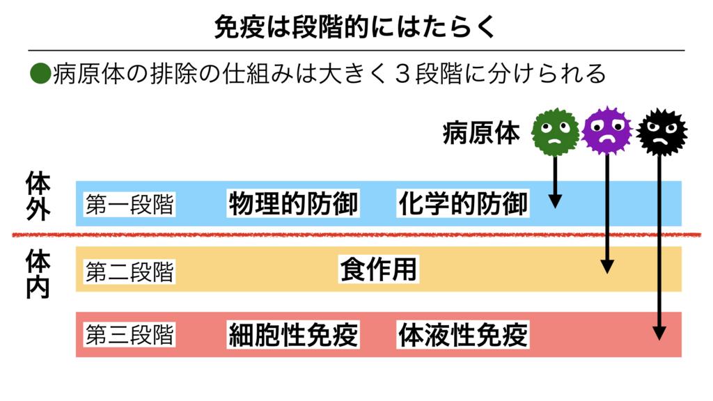 f:id:shimasensei:20180313174447j:plain