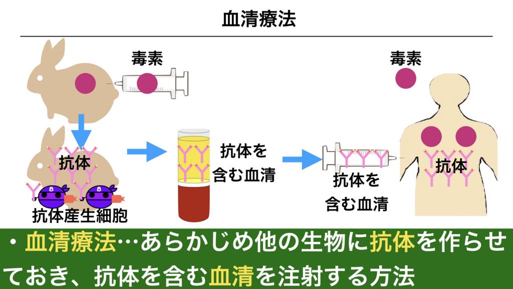 f:id:shimasensei:20180315170636j:plain