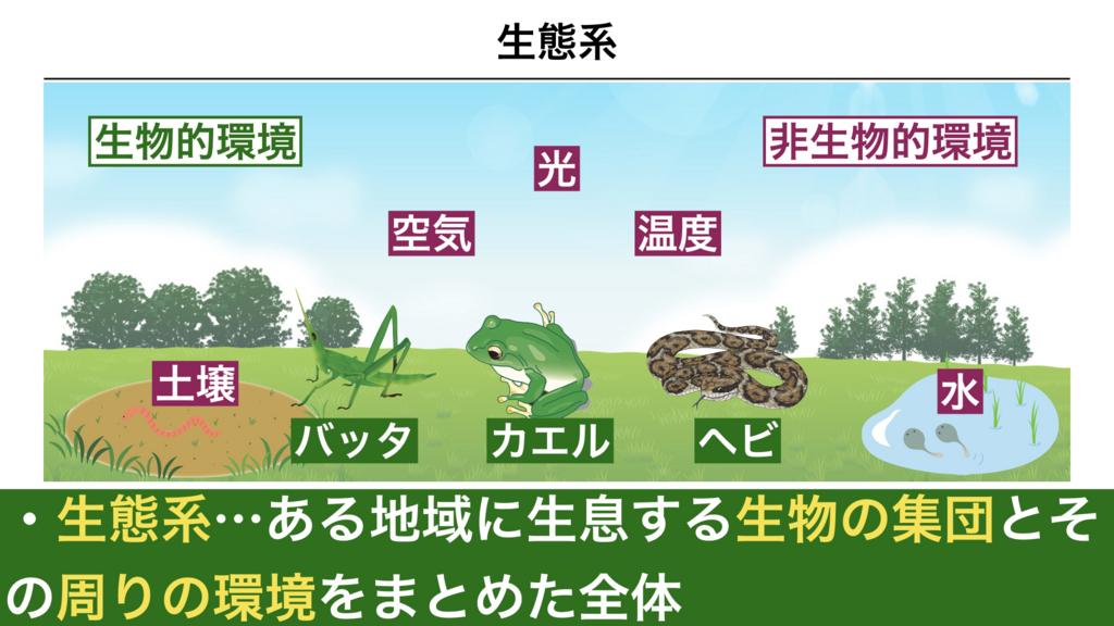 f:id:shimasensei:20180319175139j:plain
