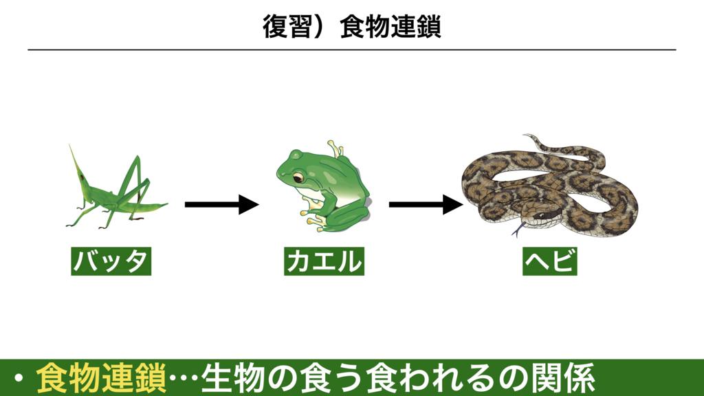 f:id:shimasensei:20180319175428j:plain