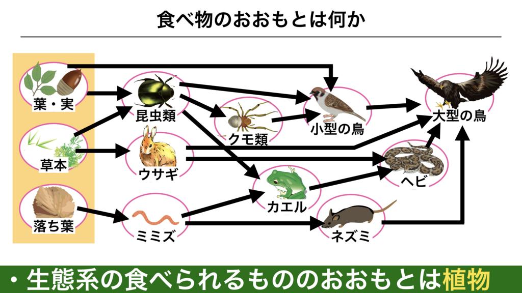 f:id:shimasensei:20180319175605j:plain
