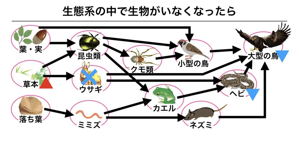 f:id:shimasensei:20180319175700j:plain