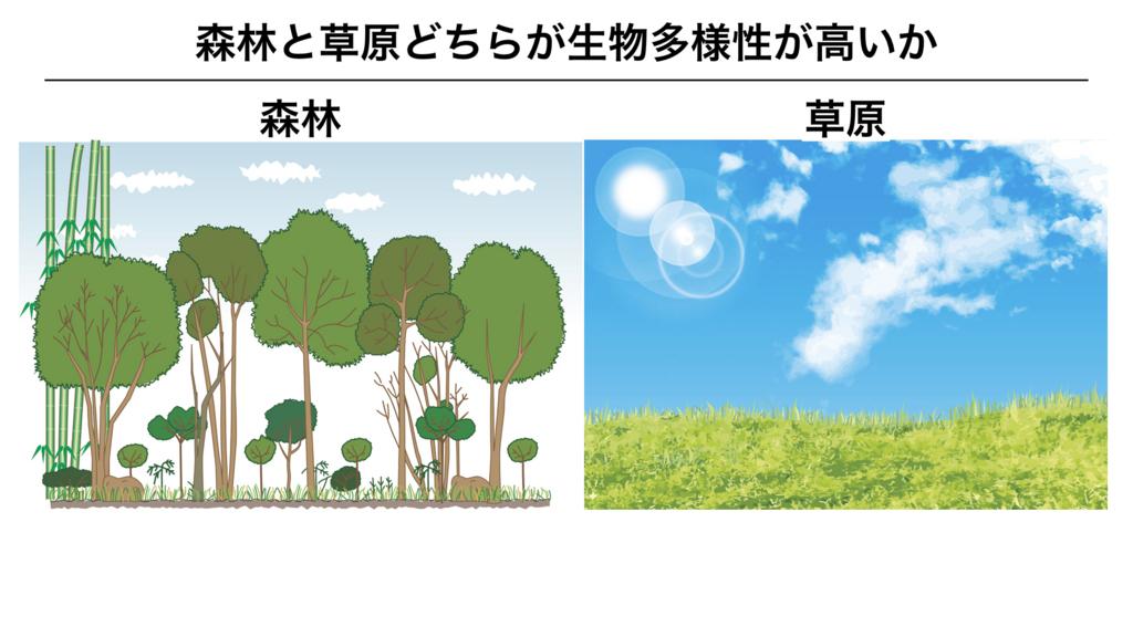 f:id:shimasensei:20180319180106j:plain