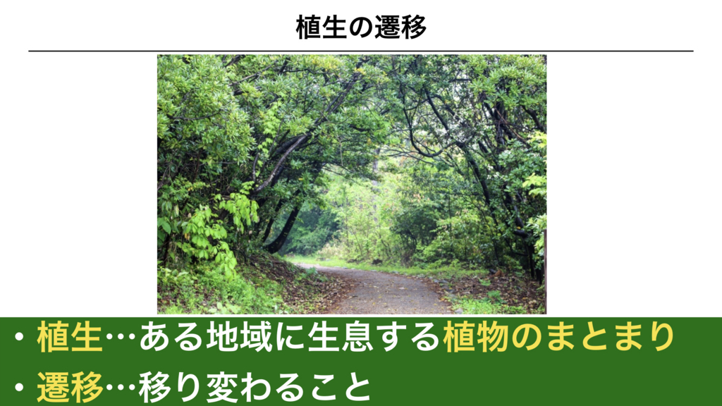 f:id:shimasensei:20180320195207j:plain