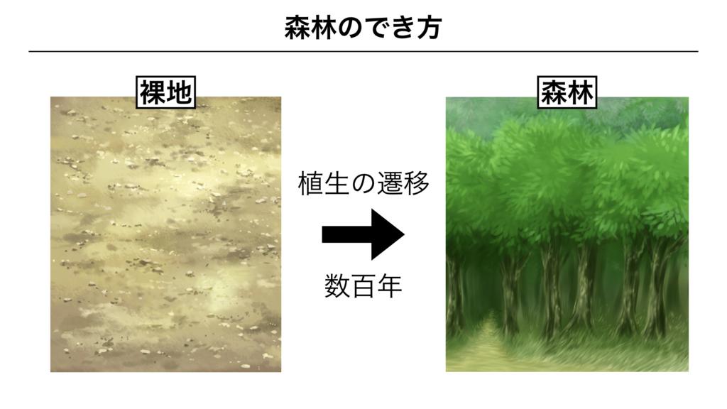 f:id:shimasensei:20180320195249j:plain
