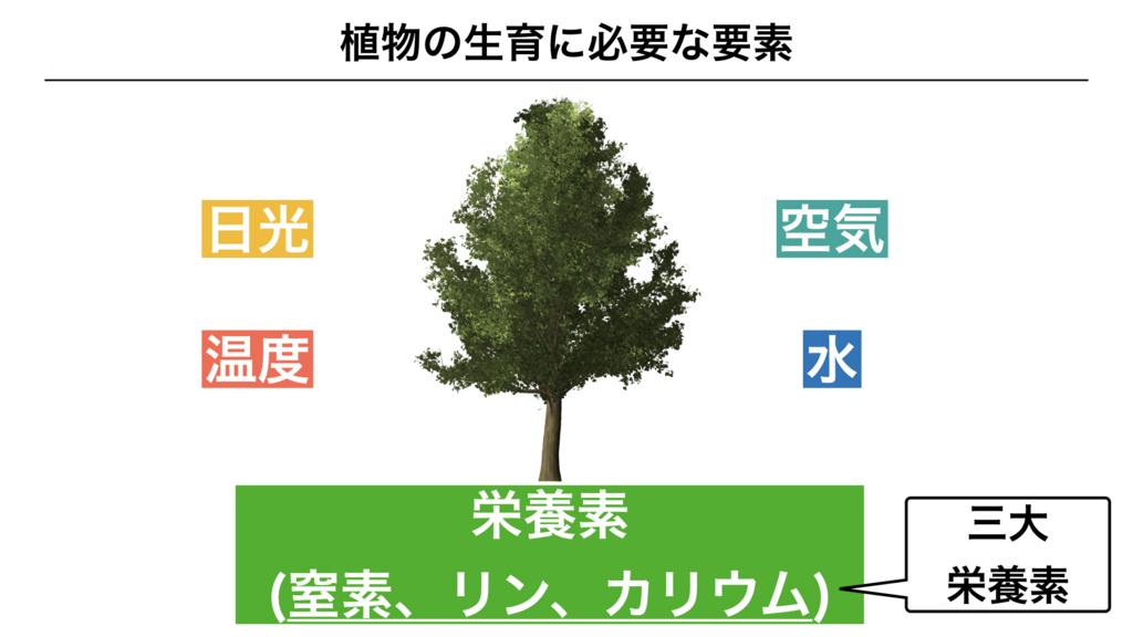 f:id:shimasensei:20180320195346j:plain