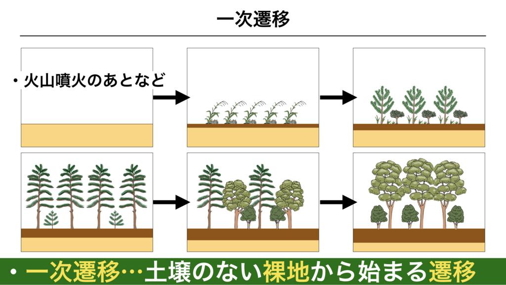 f:id:shimasensei:20180320195516j:plain