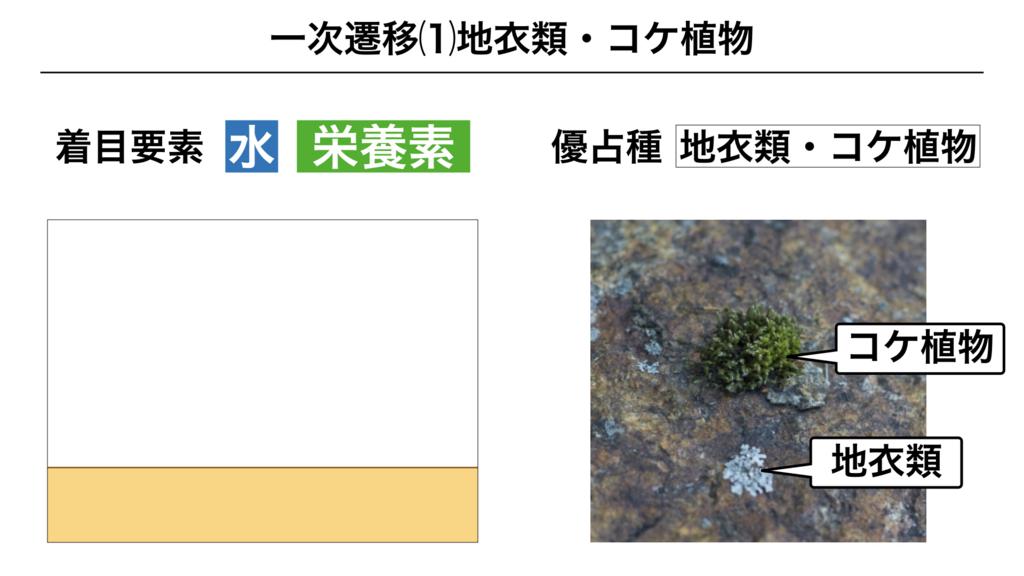 f:id:shimasensei:20180320195600j:plain