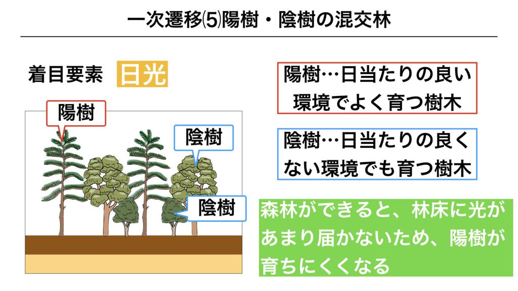 f:id:shimasensei:20180320200037j:plain