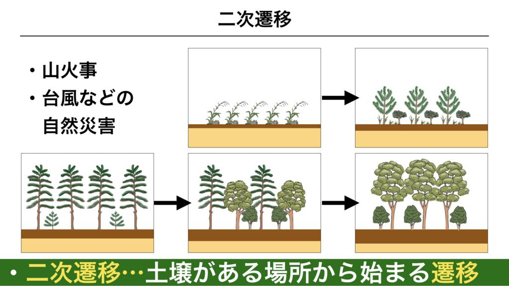 f:id:shimasensei:20180320200153j:plain