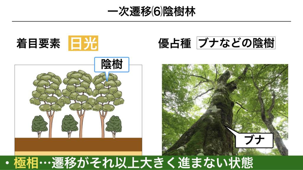 f:id:shimasensei:20180320200210j:plain