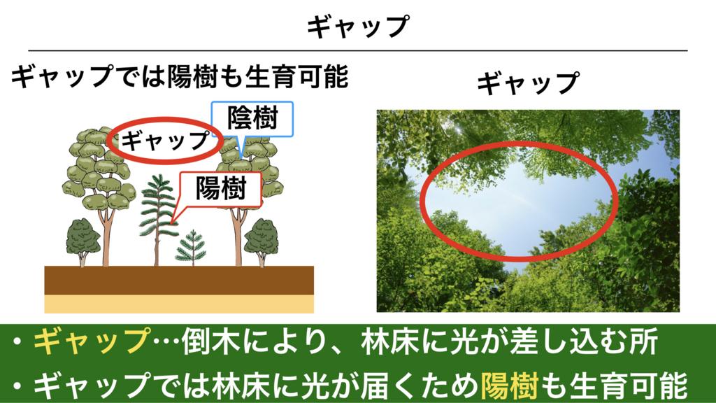 f:id:shimasensei:20180320200411j:plain