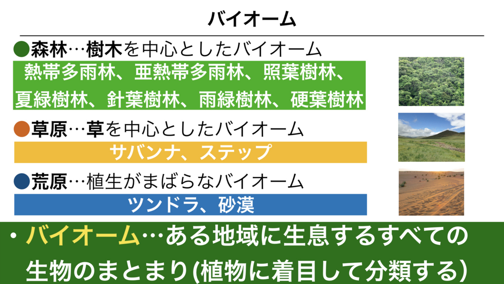 f:id:shimasensei:20180327030349j:plain