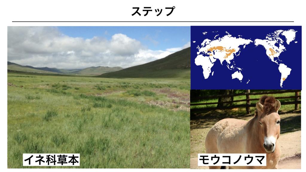f:id:shimasensei:20180327031309j:plain