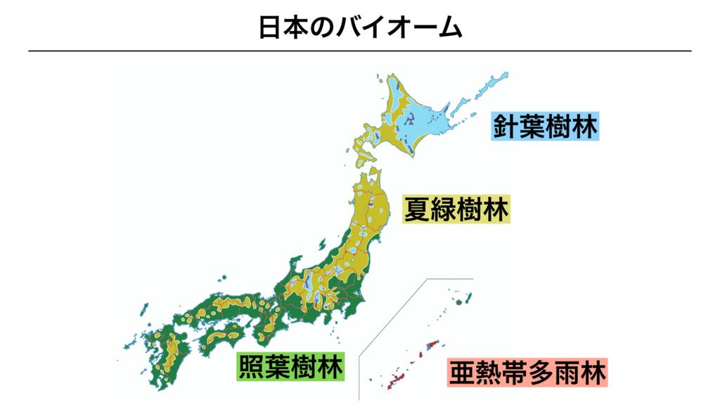 f:id:shimasensei:20180402205904j:plain