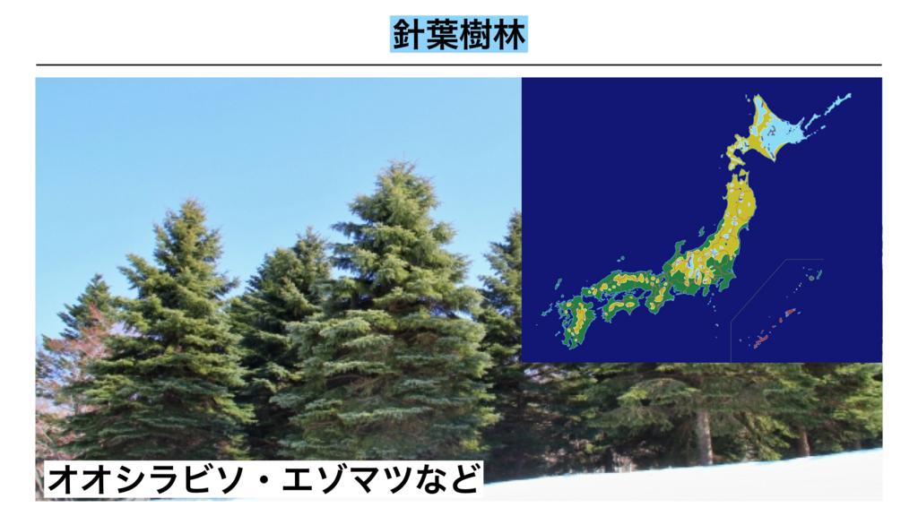 f:id:shimasensei:20180402205919j:plain
