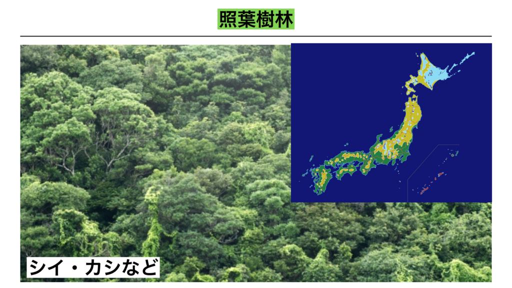 f:id:shimasensei:20180402205947j:plain
