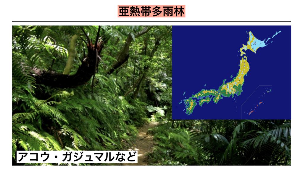 f:id:shimasensei:20180402210009j:plain