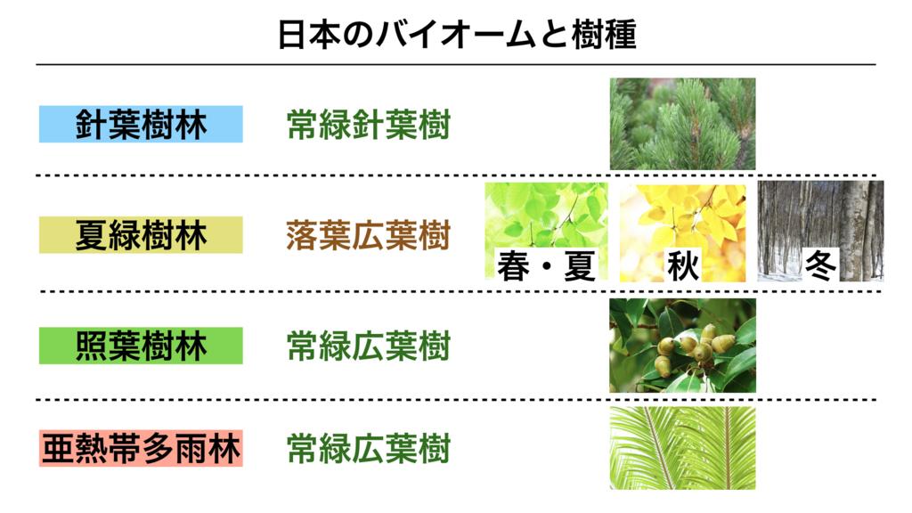 f:id:shimasensei:20180402210034j:plain