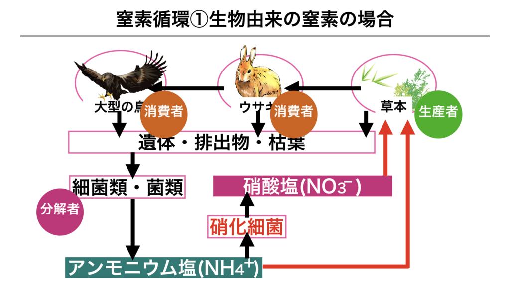 f:id:shimasensei:20180407200705j:plain