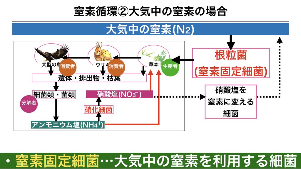 f:id:shimasensei:20180407200839j:plain