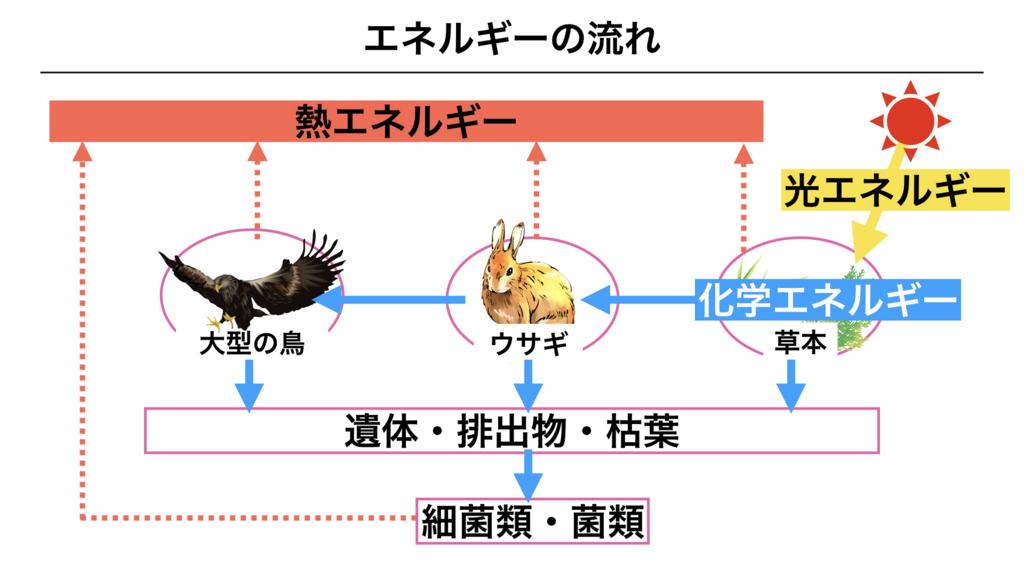 f:id:shimasensei:20180407201450j:plain
