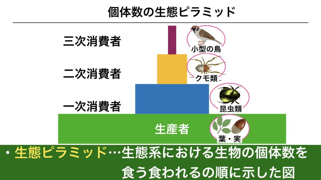 f:id:shimasensei:20180415045844j:plain