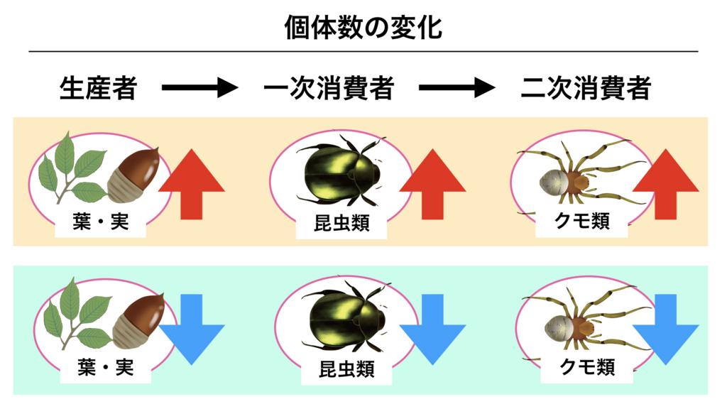 f:id:shimasensei:20180415050243j:plain