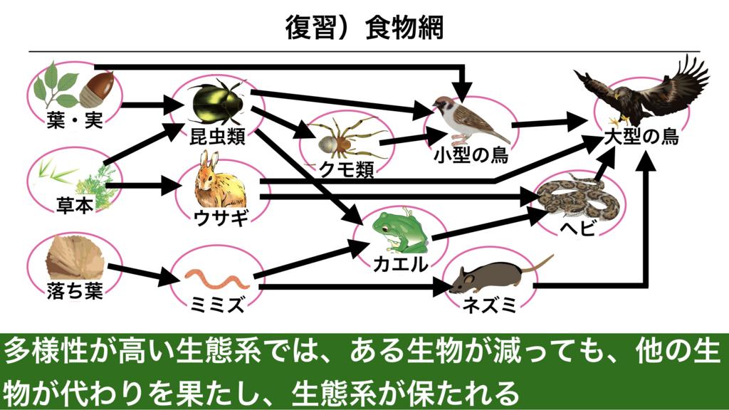 f:id:shimasensei:20180415050311j:plain