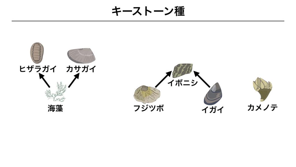 f:id:shimasensei:20180415050747j:plain