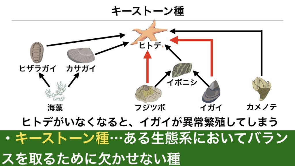 f:id:shimasensei:20180415051112j:plain
