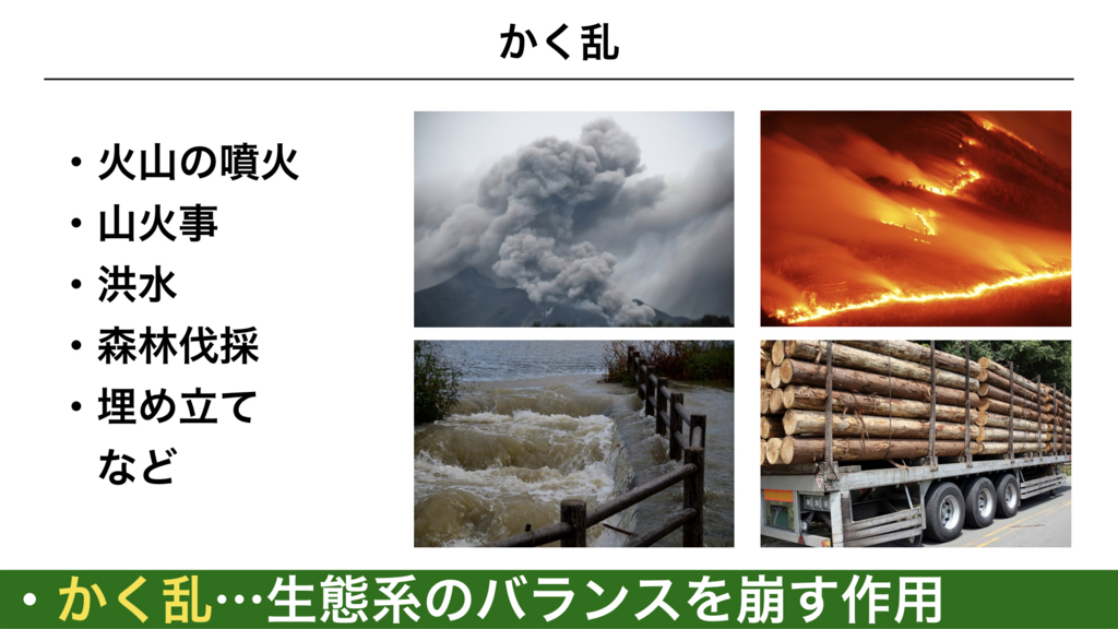 f:id:shimasensei:20180415051207j:plain