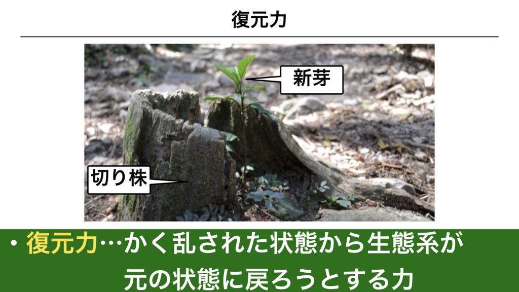 f:id:shimasensei:20180415051335j:plain