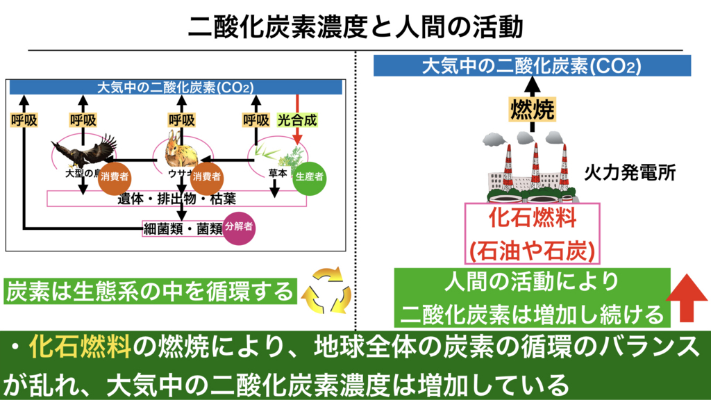 f:id:shimasensei:20180422181521j:plain